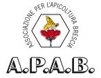 A.P.A.B. Brescia